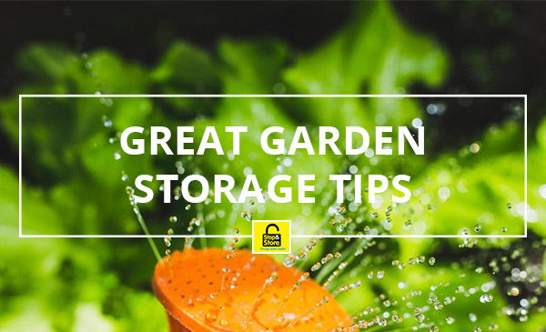 garden, storage, hose, plants