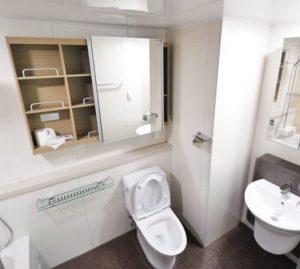 bathroom, toilet, sink