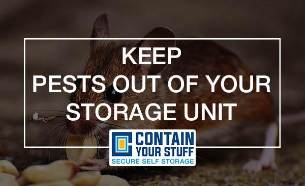 pests, self storage, tips, removal